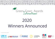 2020 Winners image #1
